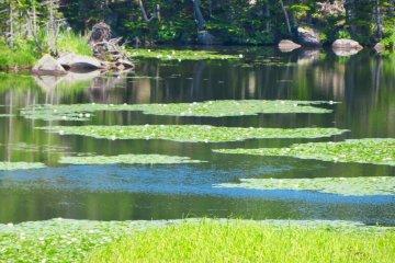 Озеро Итико