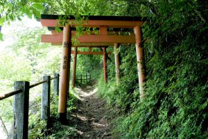 Koyasan is filled with small pathways connecting the 100+ buildings