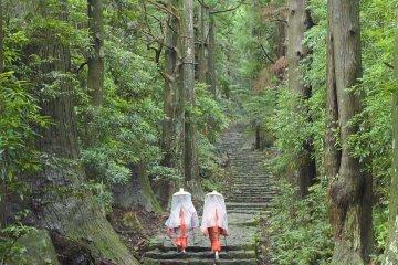 Daimon-zaka path in traditional kimono