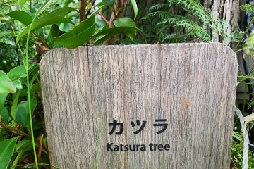 Signs indicate the different species of plants