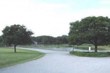 The 2020 Olympic Games: Musashino-no-mori Park