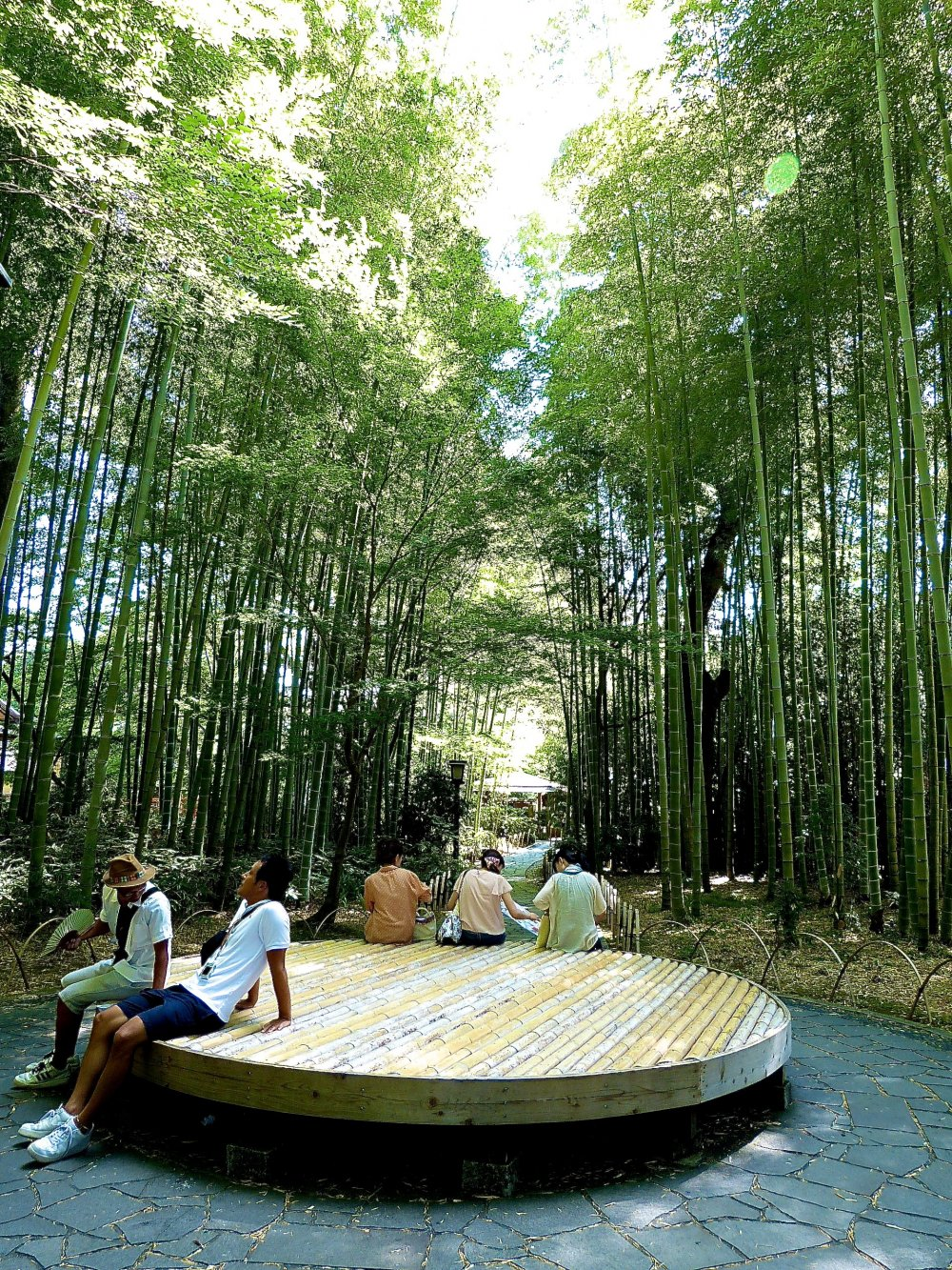 Round bench along the bamboo path