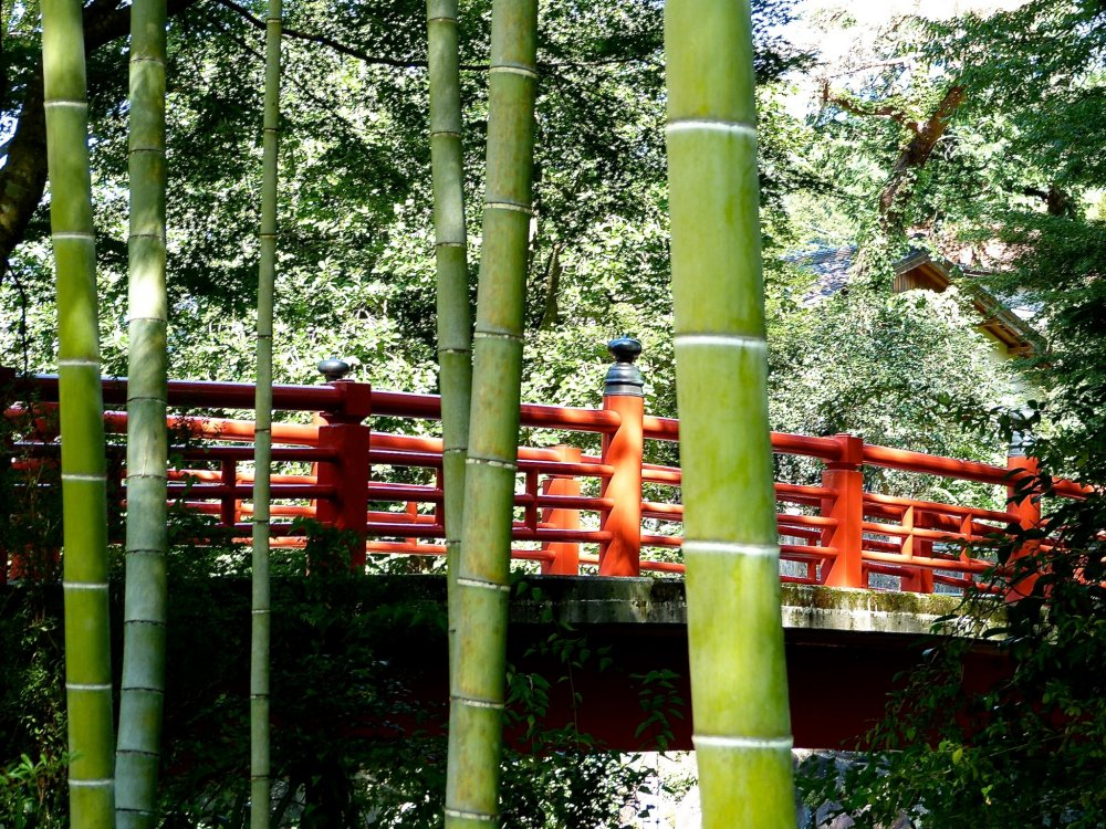 The red bridge beyond the bamboo looks brighter