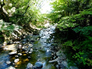 가쓰라가와 강