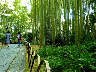 The short path barriers are also made of bamboo