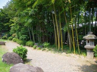 花園內必然種有竹林