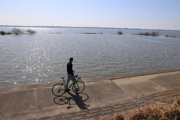 在土浦市騎自行車