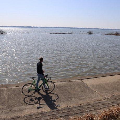 Cycling Tsuchiura