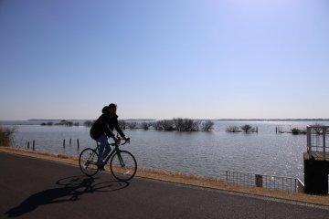 霞浦湖美麗不受干擾的風景