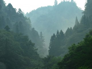 Khung cảnh từ Shinyabakei