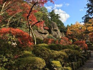 Stunning autumn colors