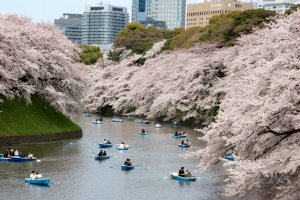 Stuck at Home? 11 Virtual Tours for Enjoying Japan