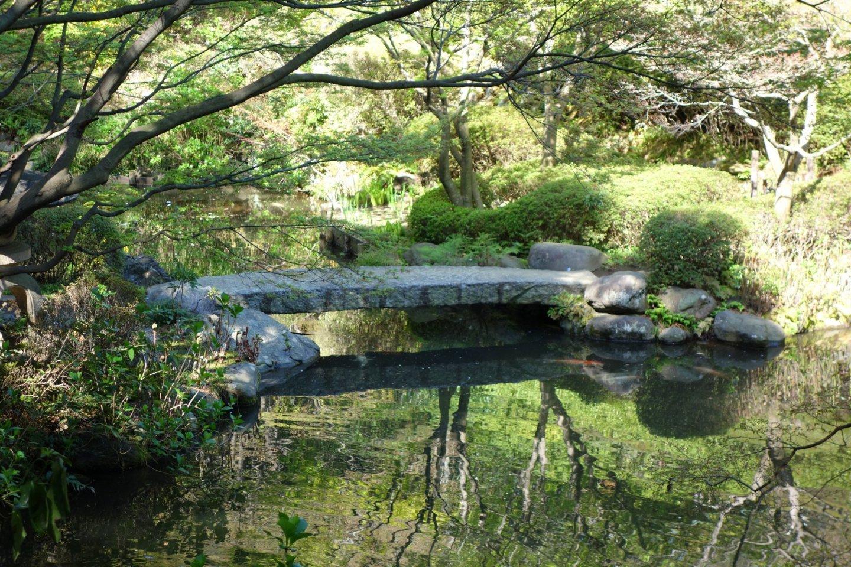 Ikedayama Park pond and bridge