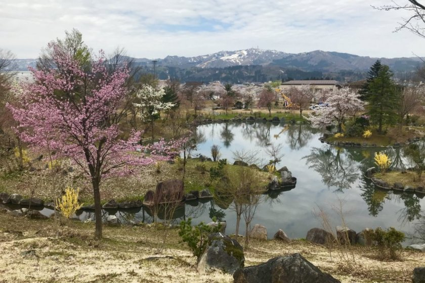 The park has plenty of natural beauty to appreciate in spring