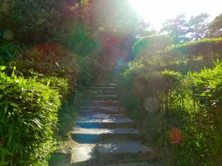 Entrance like a secret garden.