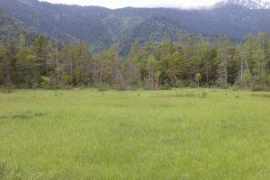 Kamikochi - Les sentiers de randonnée