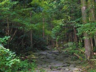 馬越峠の景観 2