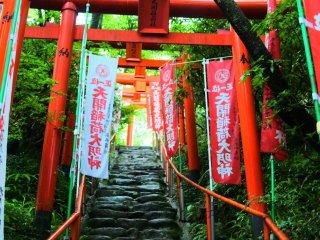 The torii towards the main building