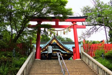 The torii gate associated with Mt. Takao's Yakuou-in
