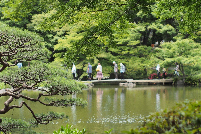 Kyu Furukawa-shi Teien Garden