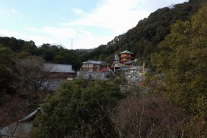 Gyokuzoin Temple which offers overnight lodgings and vegan food