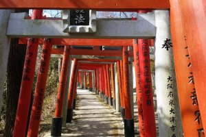 A path of torii gates on the way up to the Kuhatsu-Goho