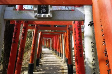 A path of torii gates on the way up to the Kuhatsu-Goho
