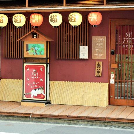 Cat Spa & Cat Ryokan in Osaka: Neko-Yokujo & Neko-Hatago