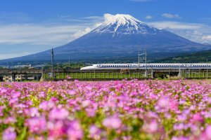 Travel by Train: New Discount Campaigns