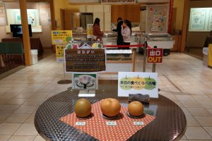 Pears are able to be taste-tested at the Tottori Pear Museum