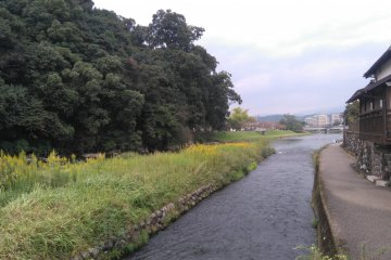 Following the river in Kumamachi
