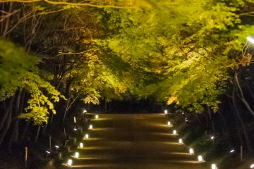 Stepping inside the Nio gate to find a magical world