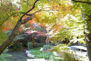 I recommend going into to the backside garden, on the other side of Hondou.