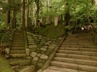 Steps in all directions.