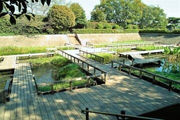Tamagawadai Park (filtered)
