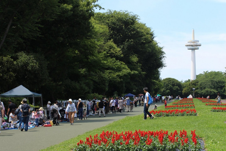 Flea market at Tokorozawa Aviation Memorial Park