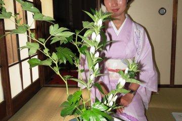 Ikebana at Ami Kyoto