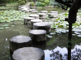 Stepping stones across the pond