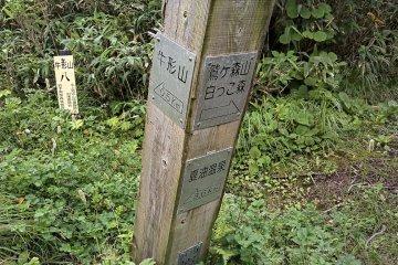 The second fork before Mt Ushigata