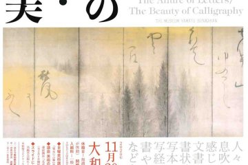 The Allure of Letters and the Beauty of Calligraphy