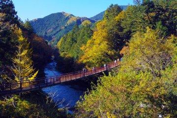 Akiruno City - Parks & Gardens