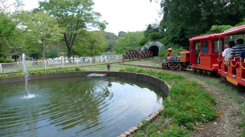 Swan pond and little red train. Choo-choo!