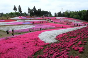Hitsujiyama Park