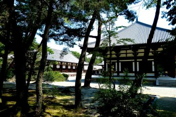 ศาลาคอนโดะและโคโดะตั้งตระหง่านอยู่ตรงศูนย์กลาง