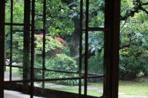 Kamihanawa garden view
