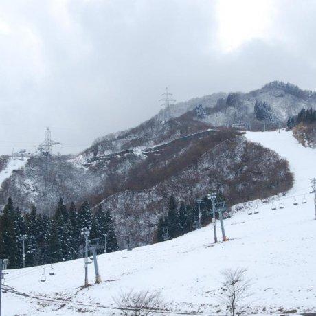 Naspa Ski Garden in Yuzawa