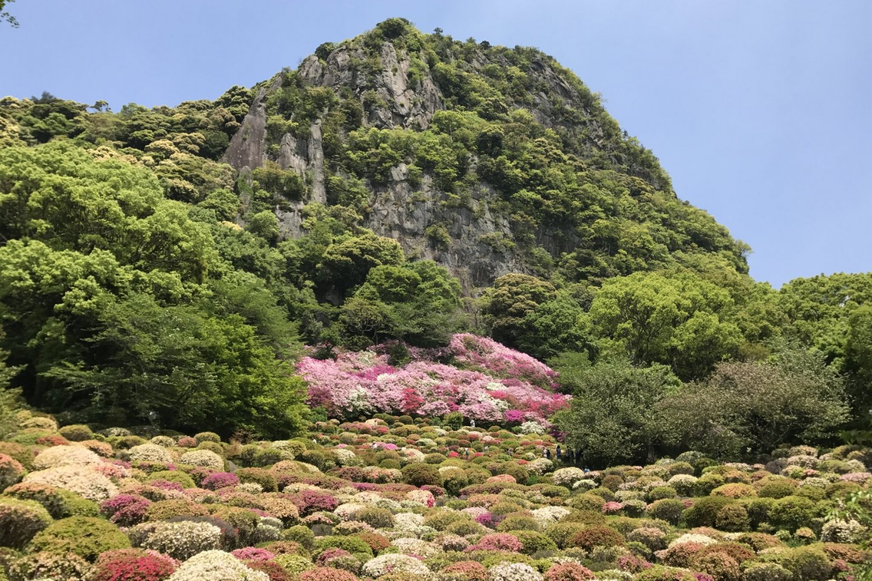 Mifuneyama Rakuen is famous for its beautiful springtime azaleas