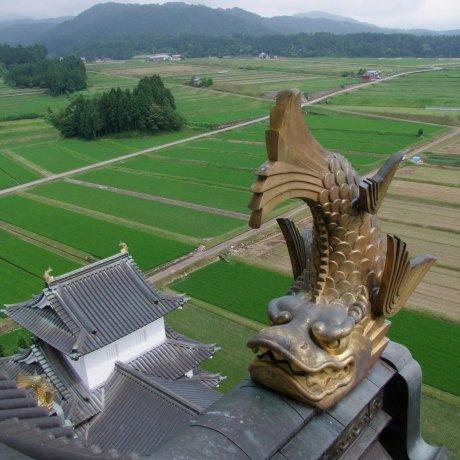 Fukui's Katsuyama Castle
