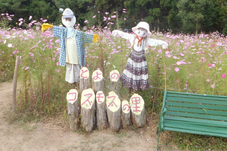 Scarecrows standing guard at the Toyono Cosmos Park