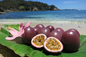 Hahajima: fruit and beaches